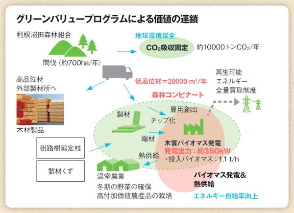 グリーンバリュープログラム 清水建設による森林再生